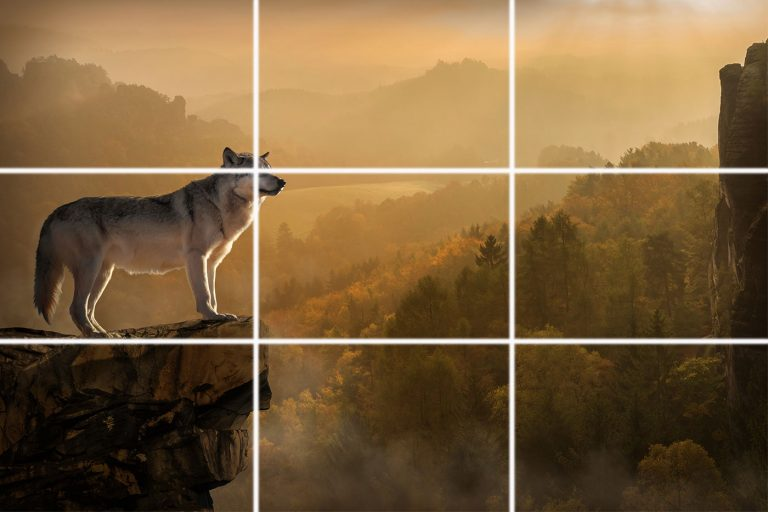 Rule of thirds photography tutorial