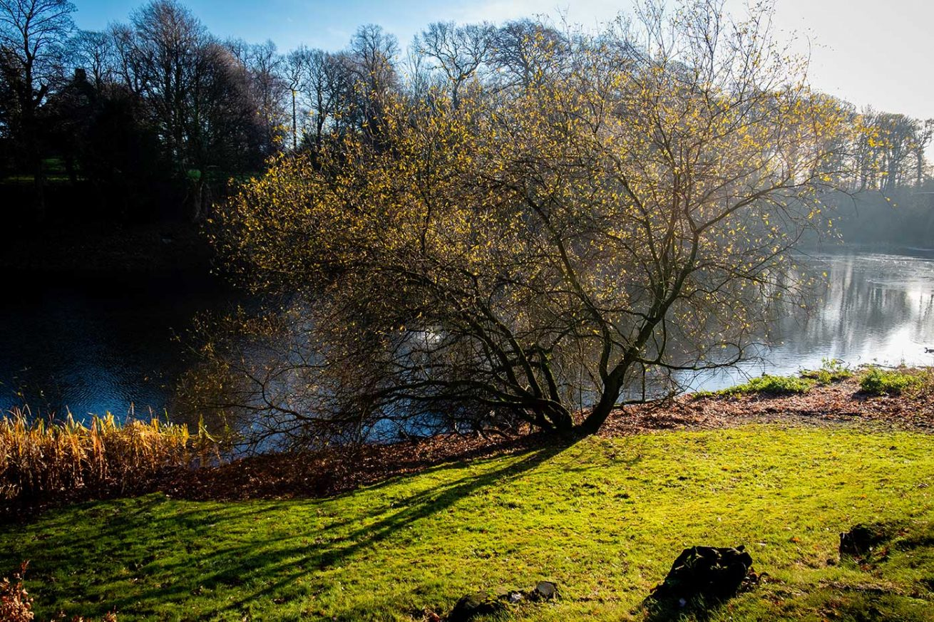 Nostell Priory Tim Hill Photography