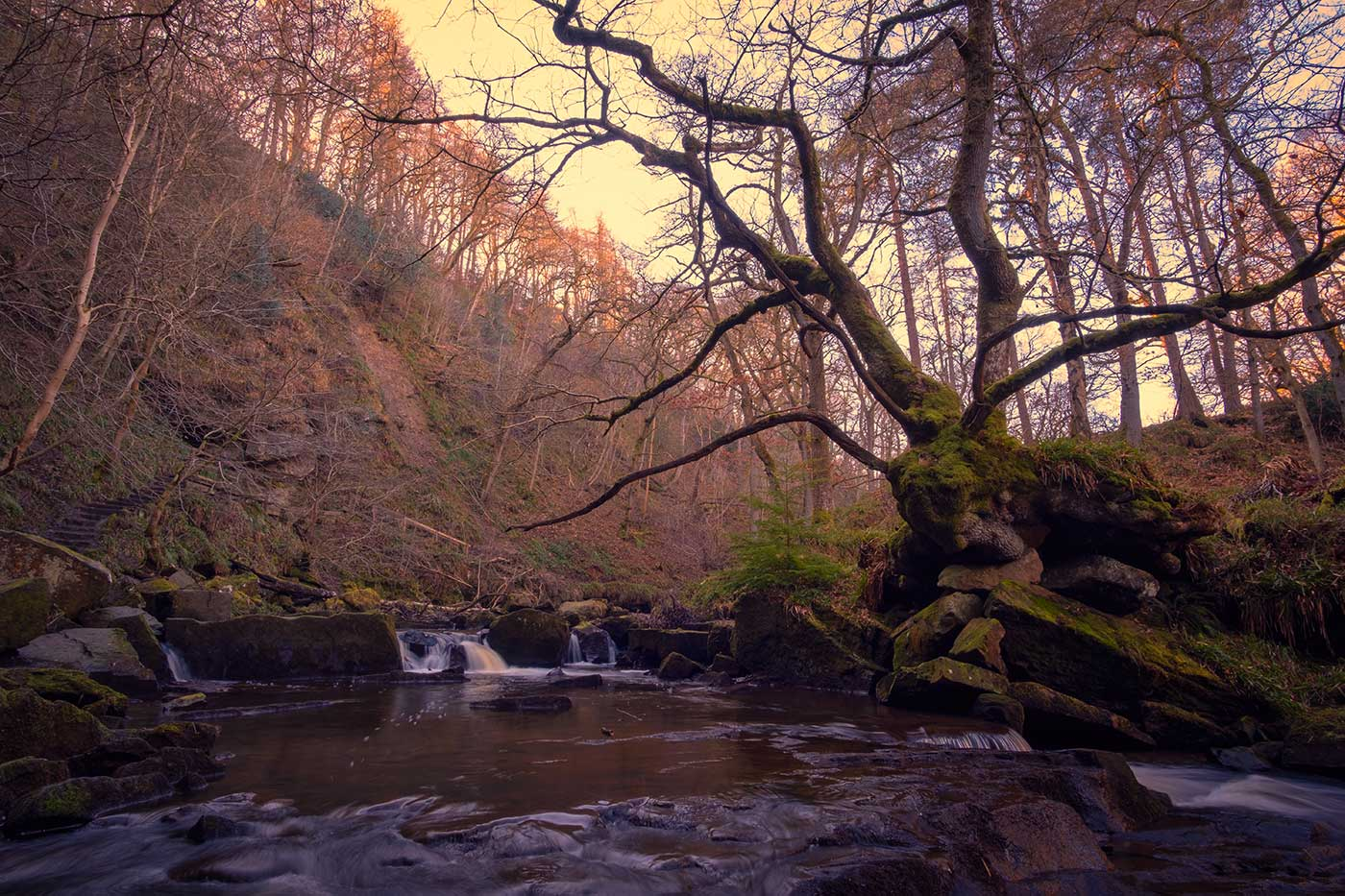 Staithes and Mallyan Spout Photography