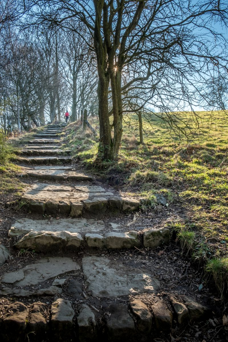 North Yorkshire Moors Path