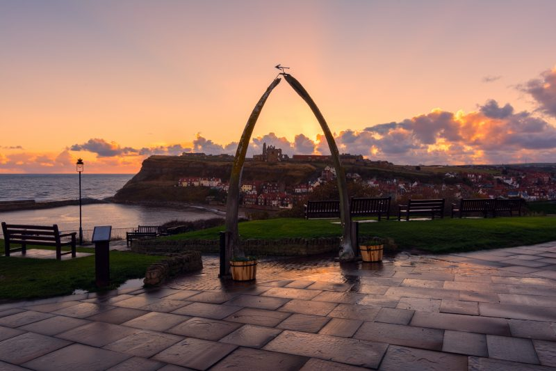 Whale Bones Whitby