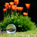 Nostell Priory Crystal Ball Photography