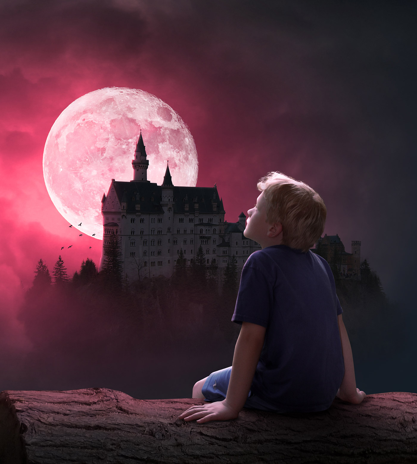 Boy Castle Manipulation