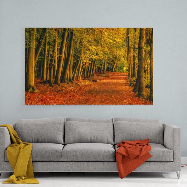 Newmillerdam Wakefield Autumn