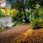 Newmillerdam Autumn Lake Wakefield 1200