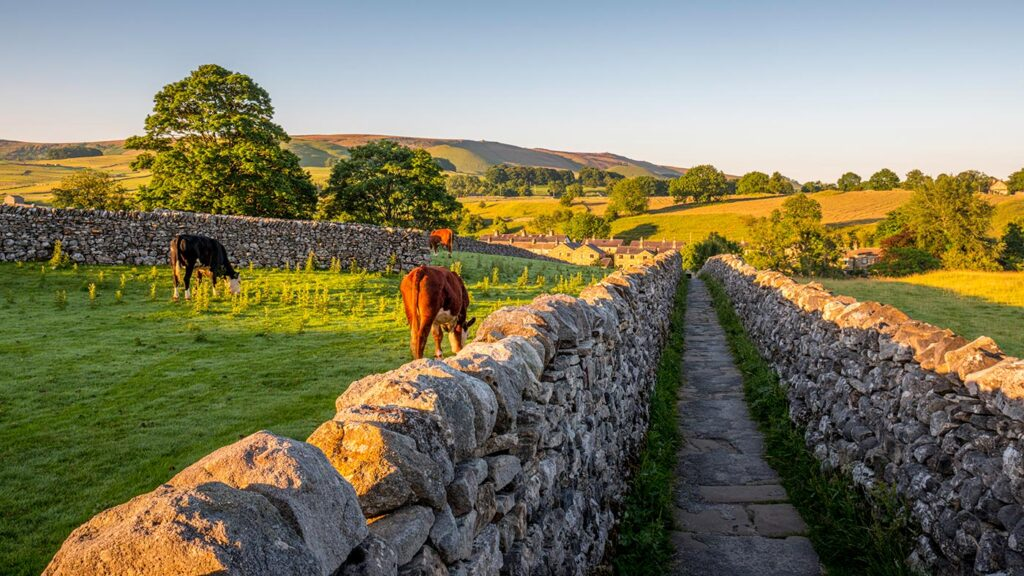 Dry Stone Walls Yorkshire Dales