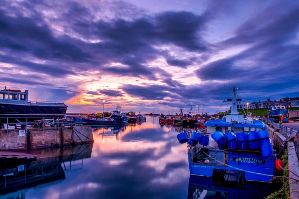 Seahouses Harbour Framed Print